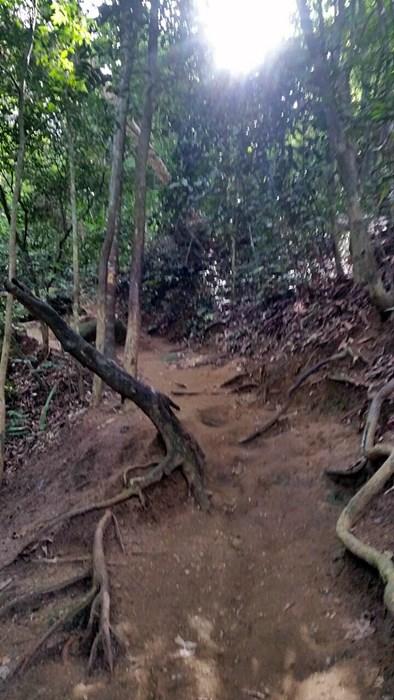 Morro da Urca Pao de Acucar Trail Hike Rio de Janeiro