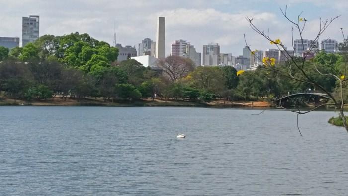 7 Reasons to Visit Sao Paulo Brazil (5)