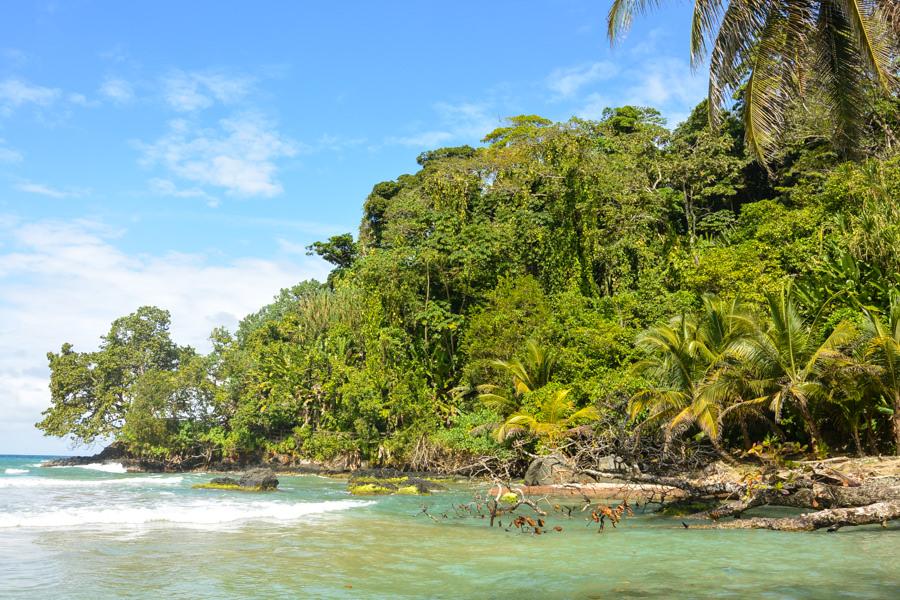 Bastimentos Island Bocas Del Toro Panama 2016-14