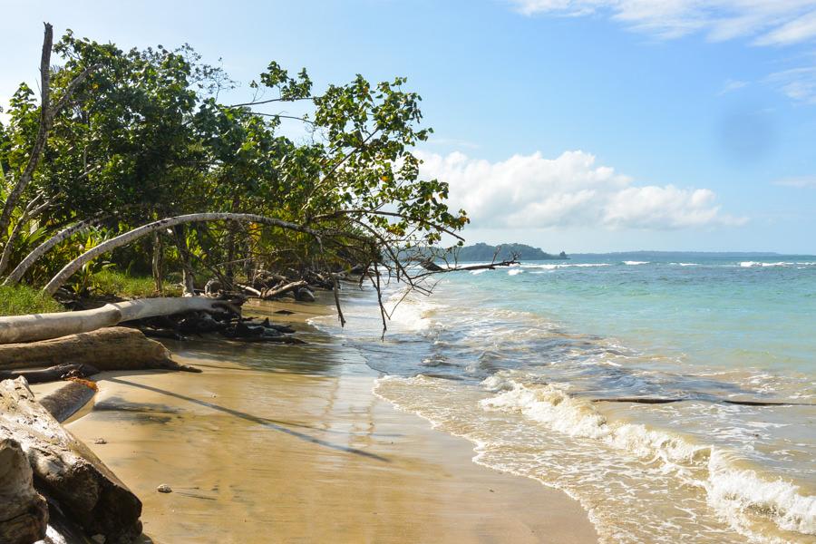 Bastimentos Island Bocas Del Toro Panama 2016-21
