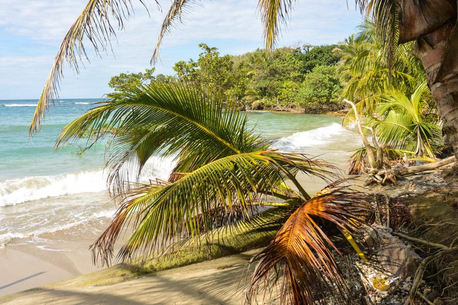 Bastimentos Island Bocas Del Toro Panama 2016-24