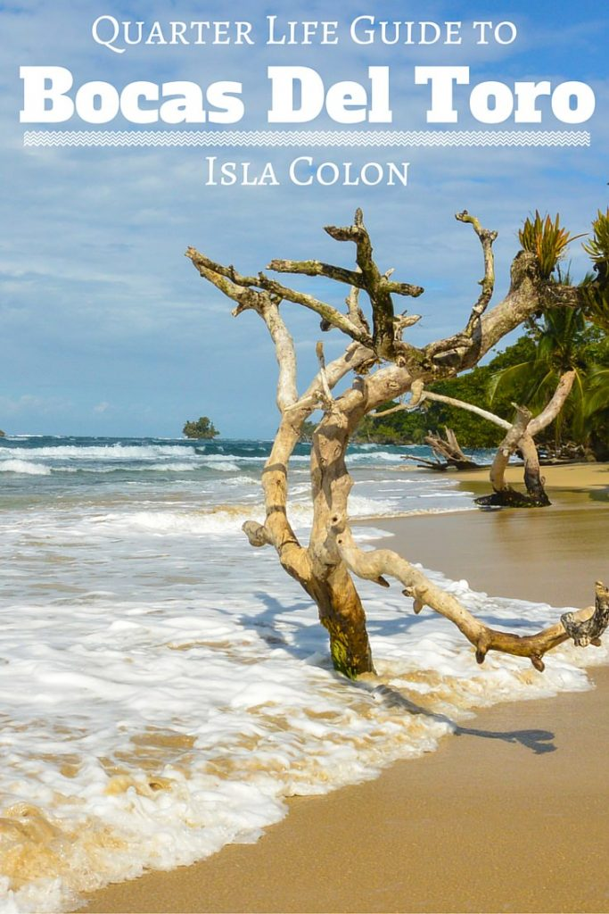 Quarter Life Guide to Bocas Del Toro Isla Colon