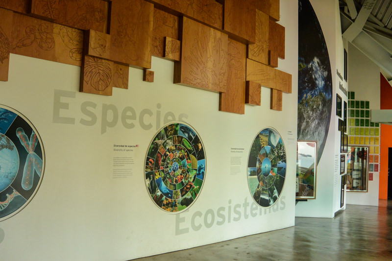 Panama City Biomuseo