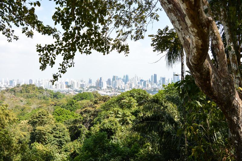 Panama City Parque Metropolitano