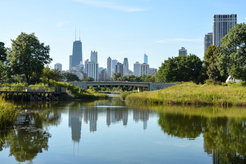 Chicago on a Budget: Lincoln Park