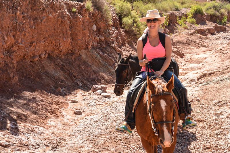 Tupiza Horse Trip Bolivia
