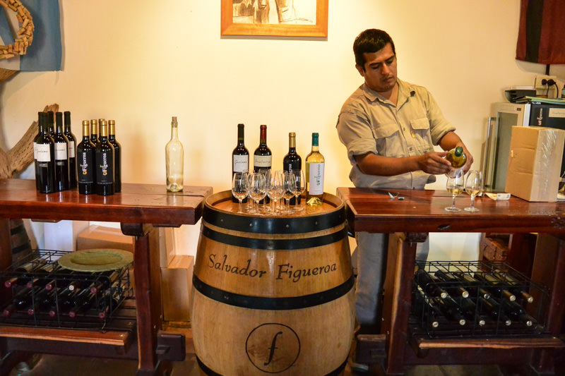 Wine Tasting in Cafayate Argentina
