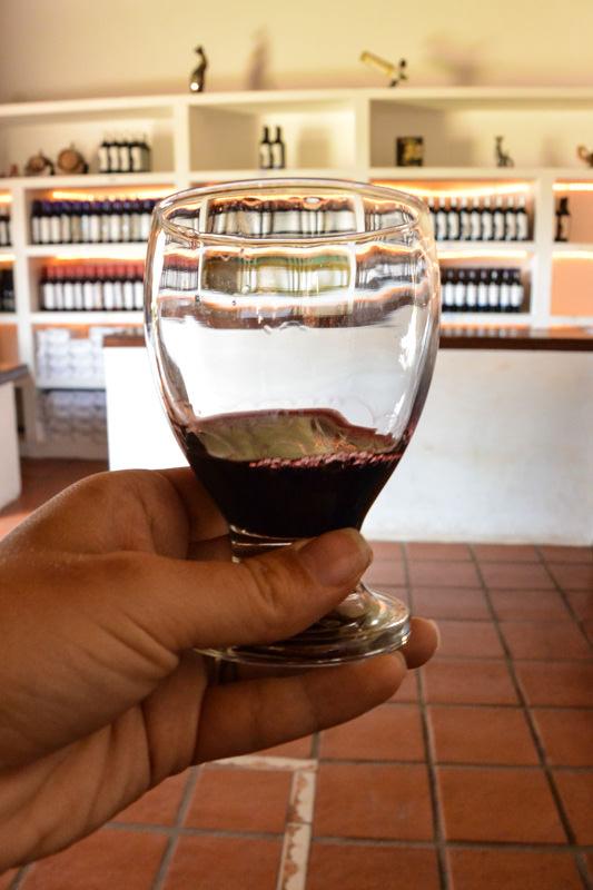 Wine in Cafayate, Argentina