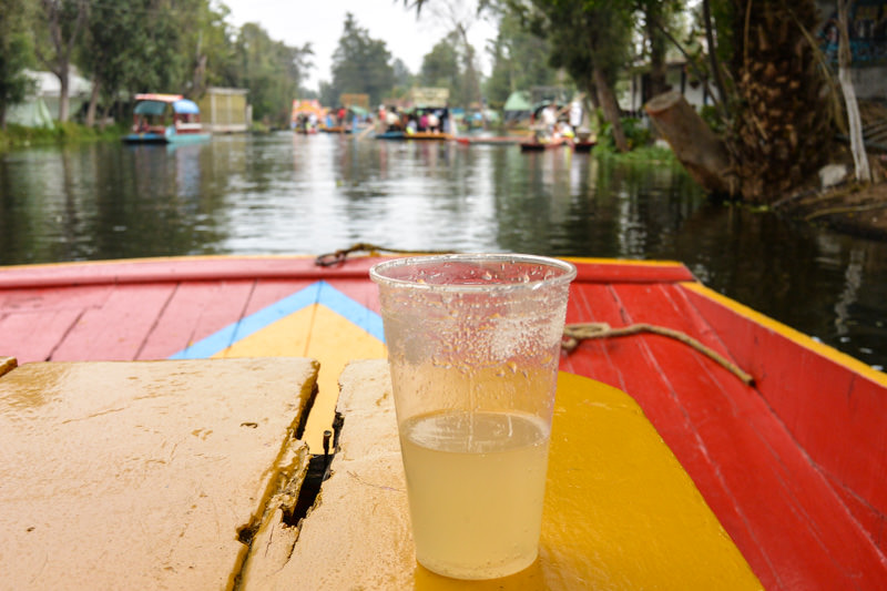 Mexico City Xochimilco