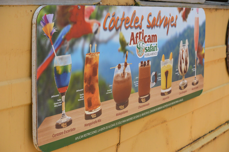 Africam Safari Drinks