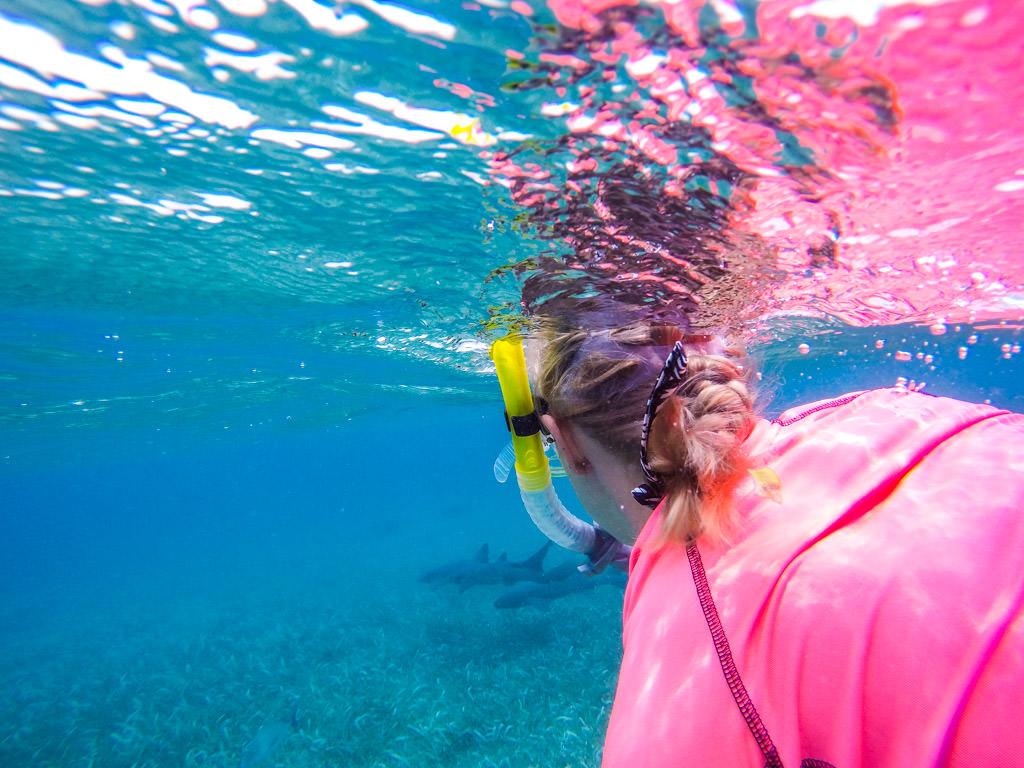 Snorkeling the MesoAmerican Reef: San Pedro, Ambergris Caye, Belize