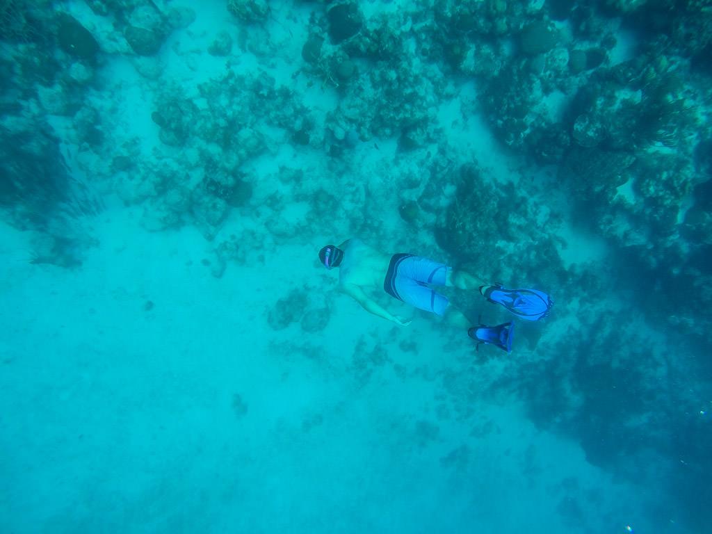 Snorkeling in Belize: Hol Chan Snorkel Site