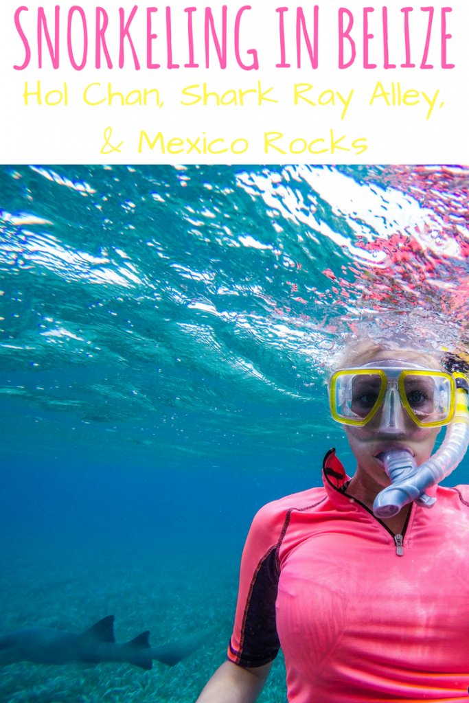 Snorkeling in Belize: Hol Chan, Shark Ray Alley, and Mexico Rocks