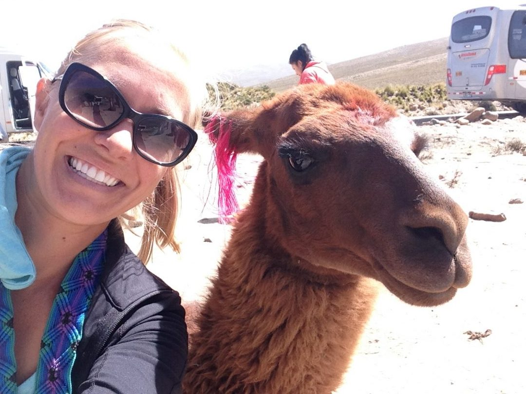 Colca Canyon Tour: Alpacas & Altitude Sickness