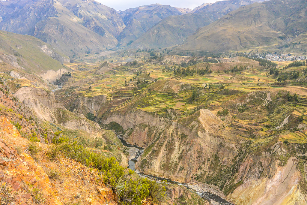 Colca Canyon Photo Essay
