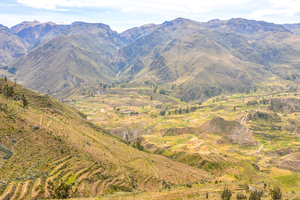 8 Photos That Will Make You Want to Visit Colca Canyon NOW