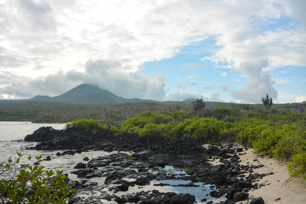 7 Ways I Was Wrong About the Galapagos Islands
