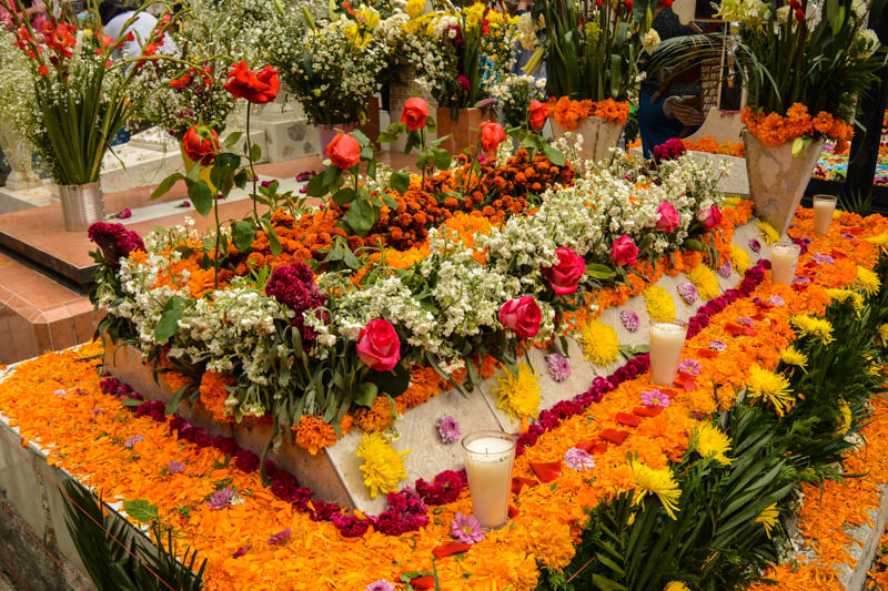 Celebrate Day of the Dead Near Mexico City: Mixquic Dia de Muertos