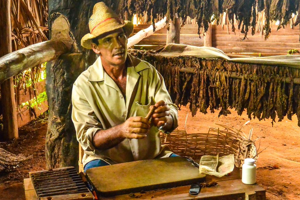 Tobacco farm in Vinales, Cuba