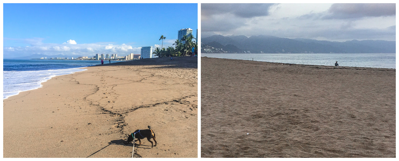 What You Need to Know About Low Season in Puerto Vallarta