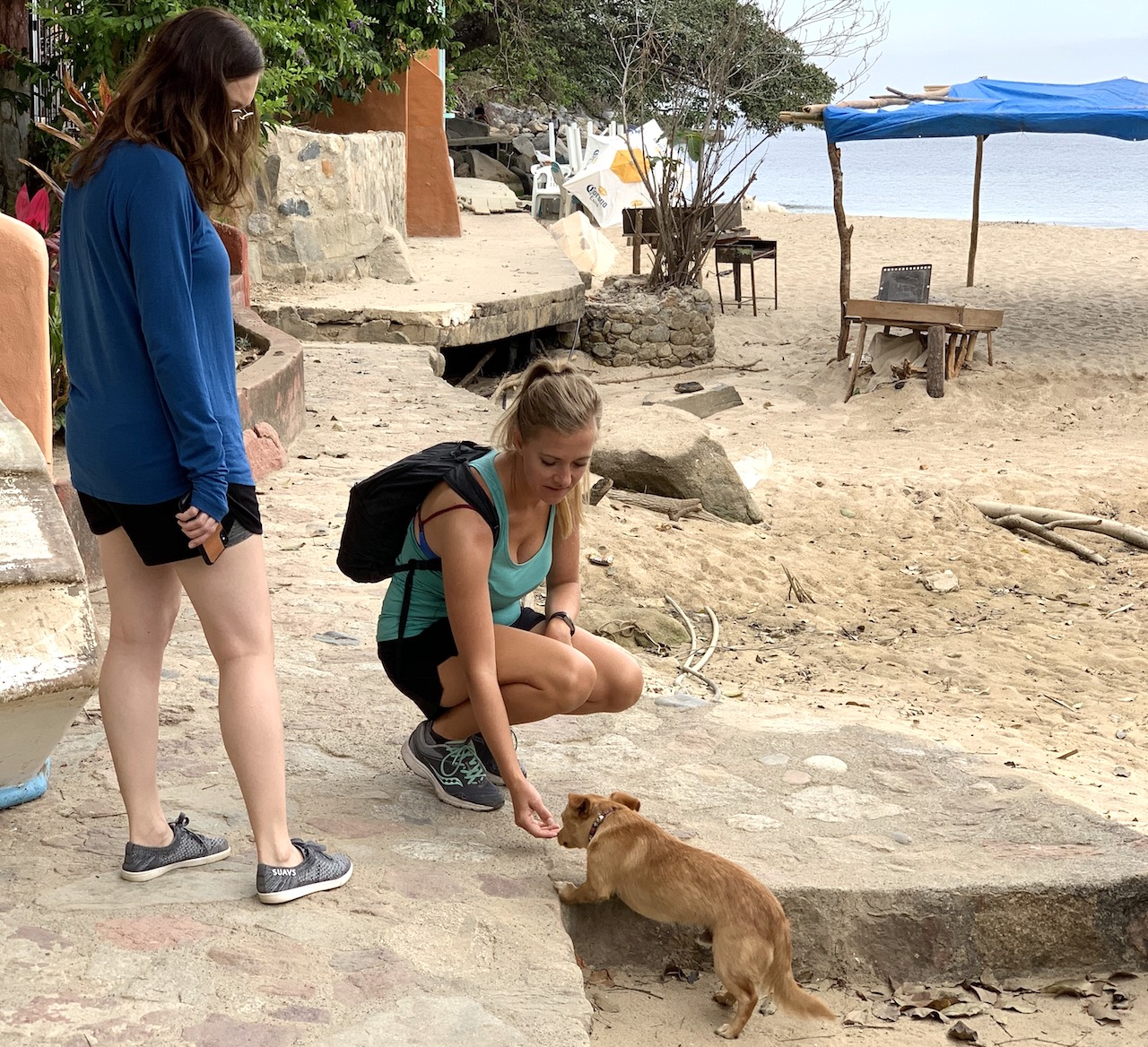 petting little dog in boca de tomatlan
